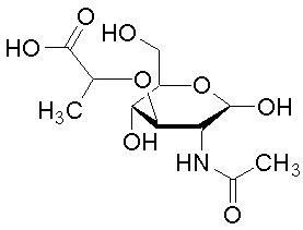 10597-89-4, N-乙酰胞壁酸, N-Acetylmuramic acid, CAS:10597-89-4